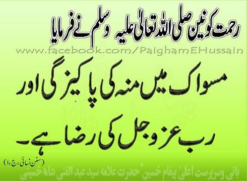 Miswaq main pakeezgi