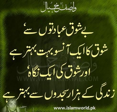 Shauq ki nigah